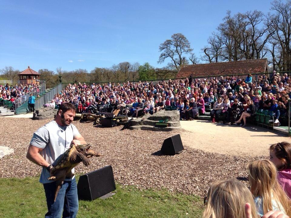 RT @SteveBackshall: A full house, plus alligator snapping turtle http://t.co/s7XAtsEwwW