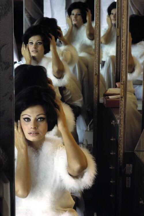 The always glamorous Sophia Loren with a perfect #felineflick #dolcevita #theicons http://t.co/wPVm8kEh1p