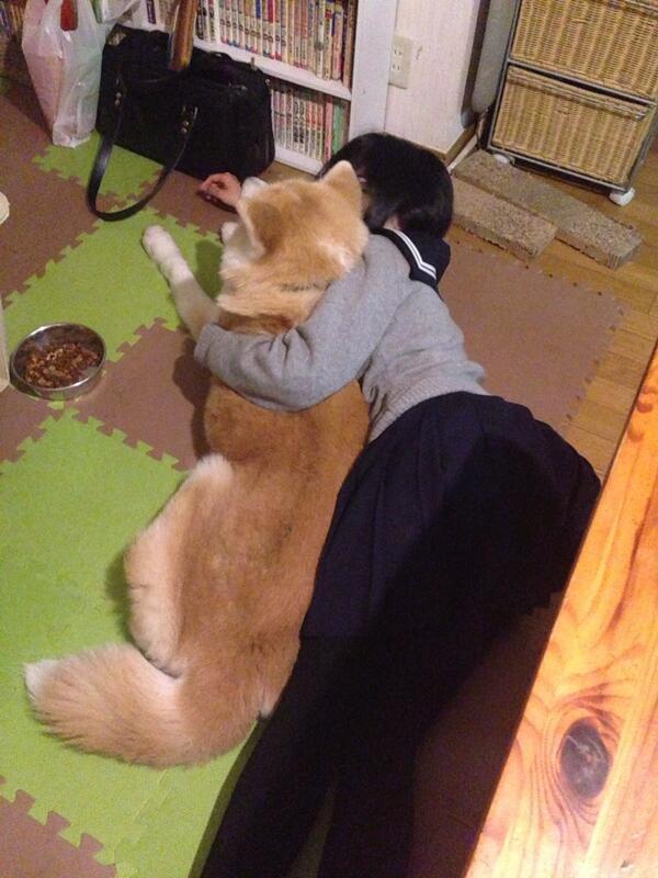 今日学校でがんばった事を犬に報告する娘。 http://t.co/Q0aD49AYTU