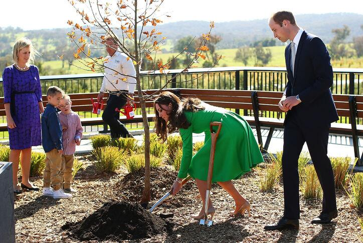 Duchess Kate wore two new pretty outfits yesterday--and planted a tree in heels! http://t.co/2b6BXxWfgc http://t.co/lKqYV4aQyl