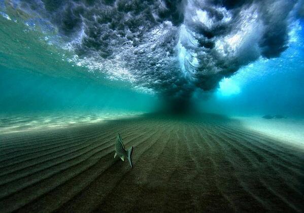 Incredible Photograph Taken Underneath a Breaking Wave off the Coast of Hawaii #ttot #travel #photo http://t.co/CrR3gIBIJm via @zaibatsu