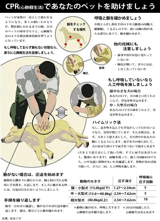 (再)犬、猫の心肺蘇生方法。これは覚えておきたい http://t.co/93qNbQUHwX