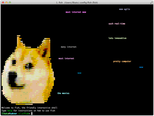 very screenshot of doge in a shell, much wow