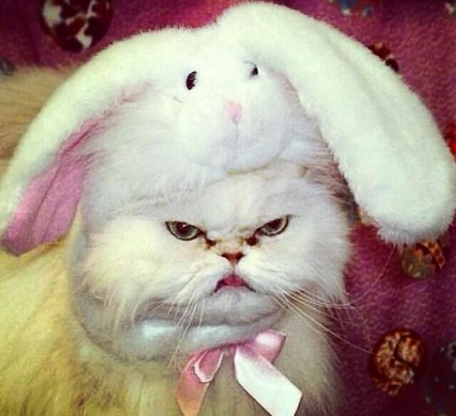I feel sick. I hate Easter. http://t.co/ABwCN2WjZY