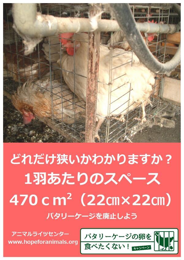 b686bb00586b http://pbs.twimg.com/media/Bly-I6JCUAAHm92.jpg