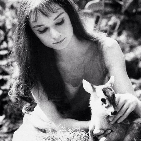 Happy birthday to a timeless beauty, Audrey Hepburn. #audreyhepburn #babydear #timeless ... http://t.co/YY2WBIxrEU http://t.co/6ZkErrpUWU