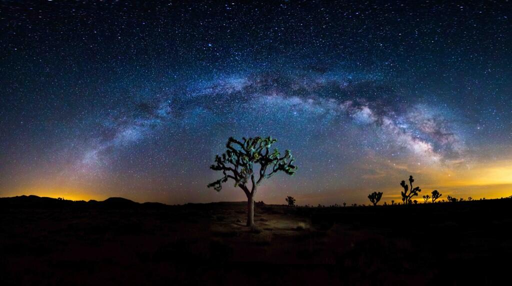 From the U.S Department of Interior Twitter feed:  To celebrate being named to the @TIME #Twitter140, here is an amazing photo from @JoshuaTreeNP. pic.twitter.com/F4DS5Xv9vq