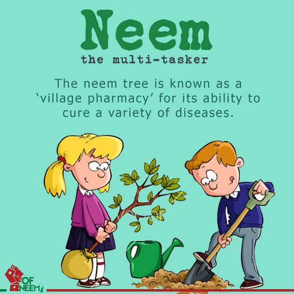 Powerofneem On Twitter The Neem Tree Has Been Known As A Village Pharmacy For Its Ability To Cure A Variety Of Diseases Powerofneeem Http T Co Mzrsusoktf Are you searching for cartoon tree png images or vector? powerofneem on twitter the neem tree