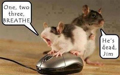 Cat & mouse #humor STAT http://t.co/087WtUHBz0 via @TamaraMcCleary #medicine