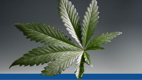 4th graders caught selling pot at elementary school http://t.co/UHvFTI6r2l http://t.co/knyFJsX5aO