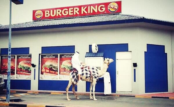 VIDEO: Qatari takes camel through Burger King drive-thru http://t.co/djQjujsFFb http://t.co/99aggQYzlp