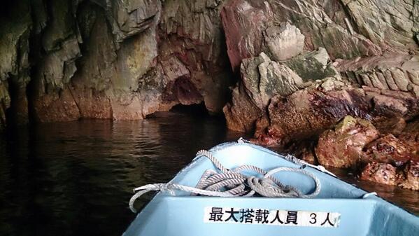 青の洞窟サッパ船、GWにいかがですかー?おひとり1500円。ウミネコが歓迎してくれまっせw http://t.co/dHj84TVNr3