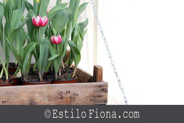 Decorar el patio o el  jardín con cajones. Te gusta la idea? http://t.co/YzdMurAdrt http://t.co/G1Al5DoMip