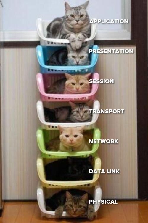 El modelo OSI... con gatitos! =D -http://t.co/CDooBBeKBa http://t.co/TjK5SfPv5r
