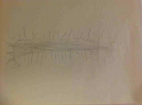 """@wander4wonder1 A (JK) drew this and says: """"they are spike caterpillars and they are moving around eating something"""" http://t.co/0dkLOjRZEF"""