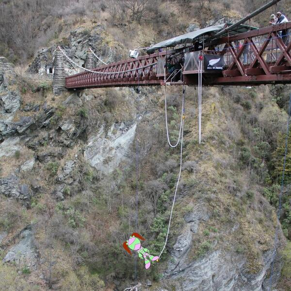 Katie Kale is a daredevil meeting her need to get an adrenaline fish by going Bungy Jumping #glutenfree #allergies http://t.co/Ubr1ePlmag