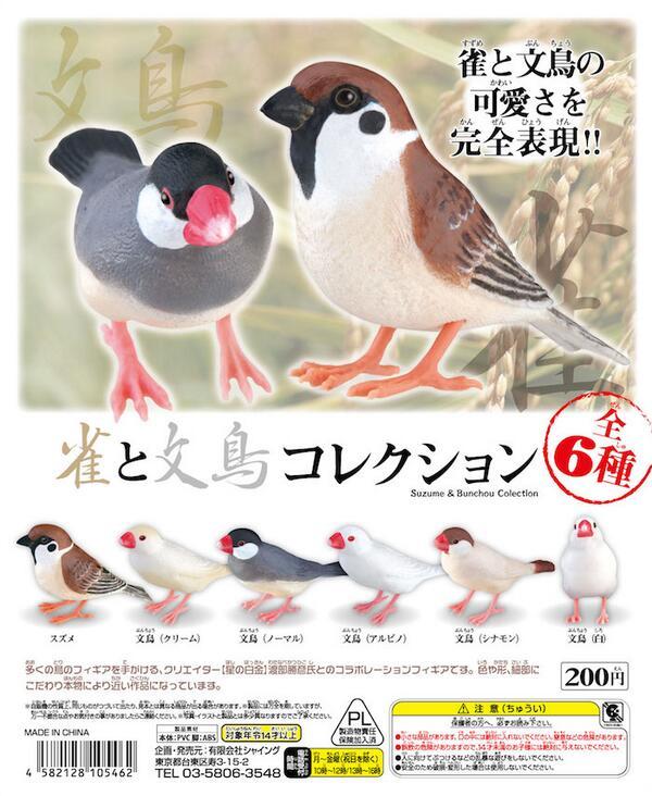 新しい文鳥ガチャ!リアル感がたまらない!!(゚∀゚*)ノこれはコンプしないと! 「雀と文鳥コレクション」 http://t.co/nl3av1SWi2  #文鳥 #buncho #スズメ http://t.co/DUM6KvUA4n