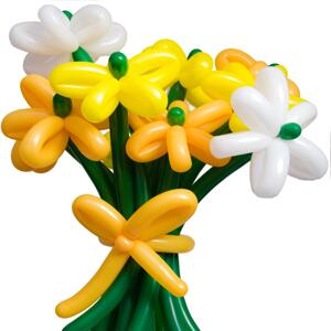 Bouquet of balloon flowers made but order just cancelled. Can offer at £12.95 plus delivery  Pl RT TY http://t.co/VCOzNDy6Br