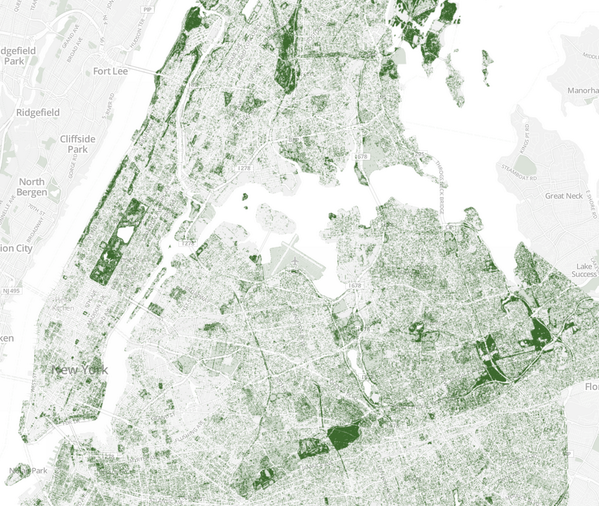 Replying to @MichaelSurtees: 9 city maps with their tree density visualized http://t.co/XJmoxPwmrV http://t.co/lSS2Wd3QMQ