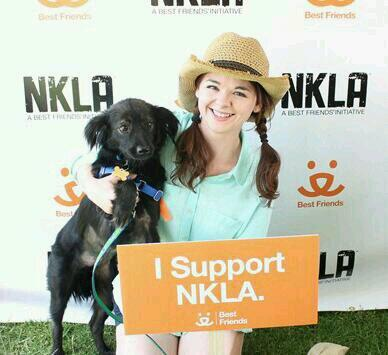 We just hit 100 adoptions! #NKLA @bestfriends @BFAS_LA #fosterdogs http://t.co/kJOnQIuAZj