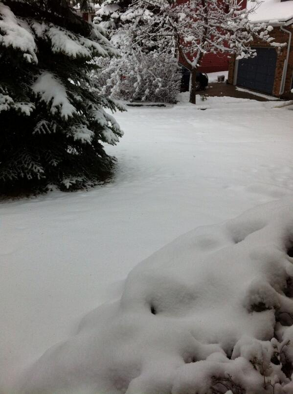 Guess what Calgary woke up to today? Snow! Looks like #Christmas is back but wait, it's May not Dec. #yyc http://t.co/0kcXIuL8qJ