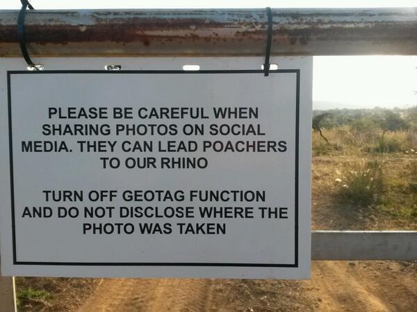 Rhino privacy, very important! RT @TrendKE: A sign of our times. Makes me sad! http://t.co/xwAvZVHn0j via @Eleni_dW http://t.co/jQFhwAdhct