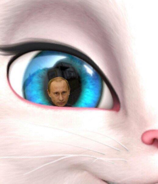 Картинки в глазах говорящей анжелы