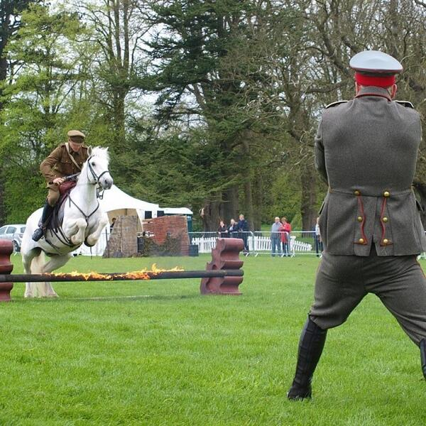 One of the best shots from the Atkinson's Action Horses show at Castle Howard.  #horses ... http://t.co/HQy4l9P9oi http://t.co/jmwyGASz78
