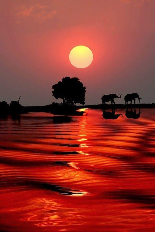 The Most Stunning Places On The Planet | http://t.co/7WplMATZlX http://t.co/9J3VKjE2j8 http://t.co/3jeKUpq0bS rt @muz4now @drkent @torque10