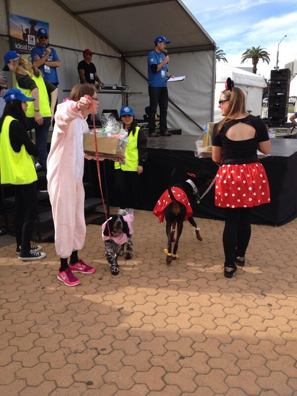 The best dressed competition was a hoot! Who was your fav? #millionpawswalk #mpwsydney #mpw2014 http://t.co/KBJGy3jJow
