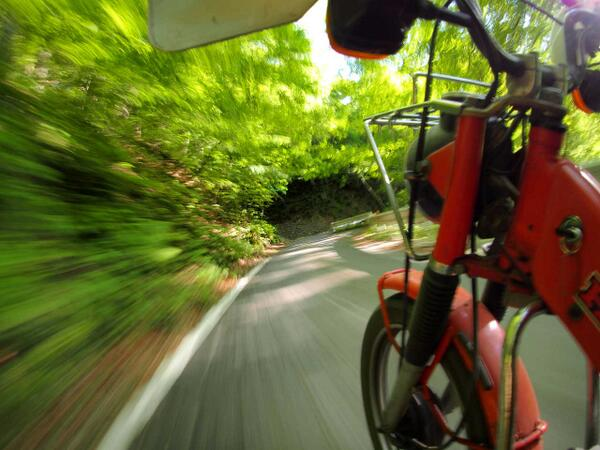 新緑の八溝林道・・・通行止めじゃねえかよORZ