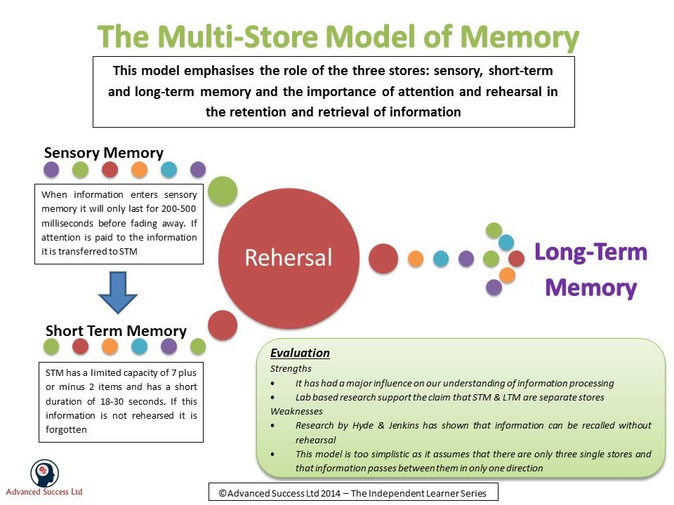 the multistore model of memory essay Evaluate the information processing models to learning, distingush the main features of the multi-store model essay.