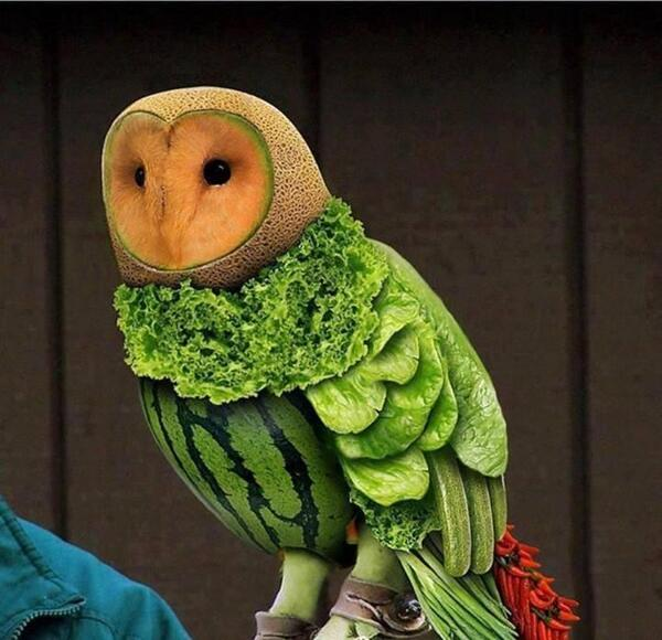 This blows our minds. A food owl masterpiece. http://t.co/VDzyB06l7G #food #art #kids #foodart http://t.co/wDv78CMTvU