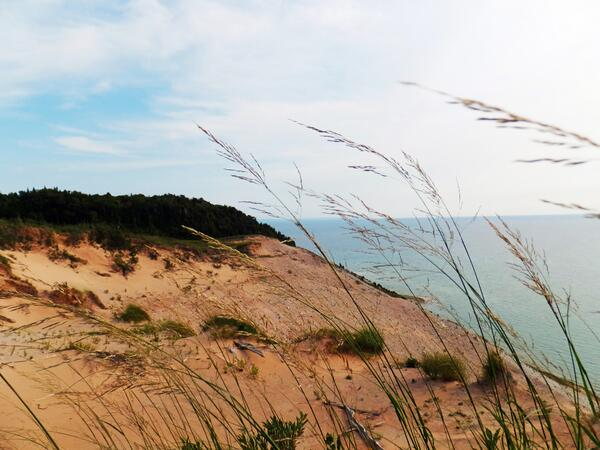 #WhyIStay #heady #Dunes #SouthManitouIsland #Nature #GreatLakesState #LakeMichigan @MichiganRadio @PureMichigan http://t.co/Qllaxx8byC