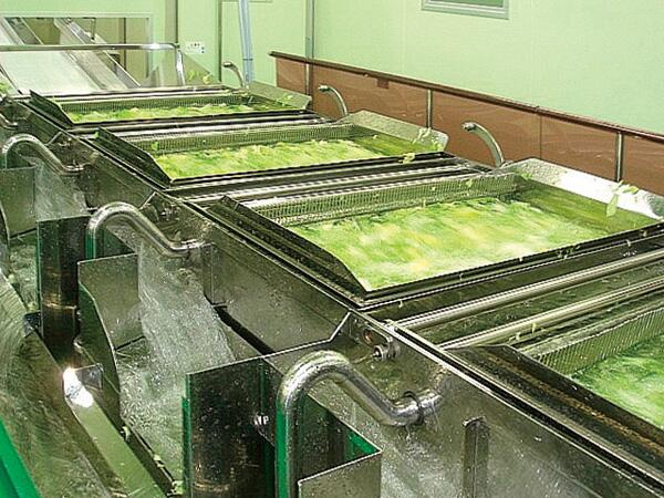 カット野菜は、切った後次亜塩素酸ナトリウムや塩素水に繰り返し漬けて殺菌し、においを消すために、何度も水で洗浄。それで野菜に含まれている栄養素は、流れ出てしまい、ほとんど何も残っていませんいhttp://t.co/2hg5WWTJ2x http://t.co/yM11QTvVmY