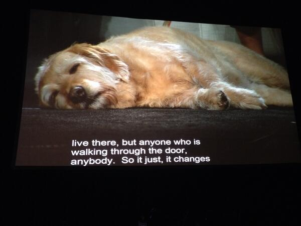 That's our dog on the huge screen in Boston convention center @lifereimagined #lifeat50 Dog Walks Into a Nursing Home http://t.co/rZ5bWYJoCV