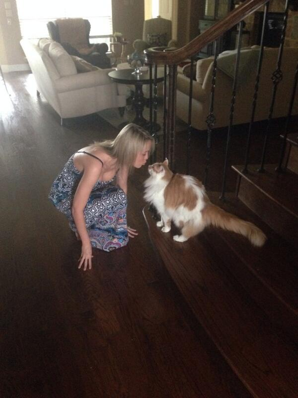 MagentoJenna: Good-bye kisses from my fluffy cat. Headed your way #magentoimagine ! http://t.co/d0aFjGrOqm