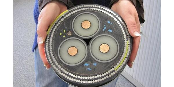"""@pickover: Magnificent cross-section of an undersea cable. $400/foot.  (photo: Ann Lingard) http://t.co/jaoFeGVxxe"" Cat239 :)"