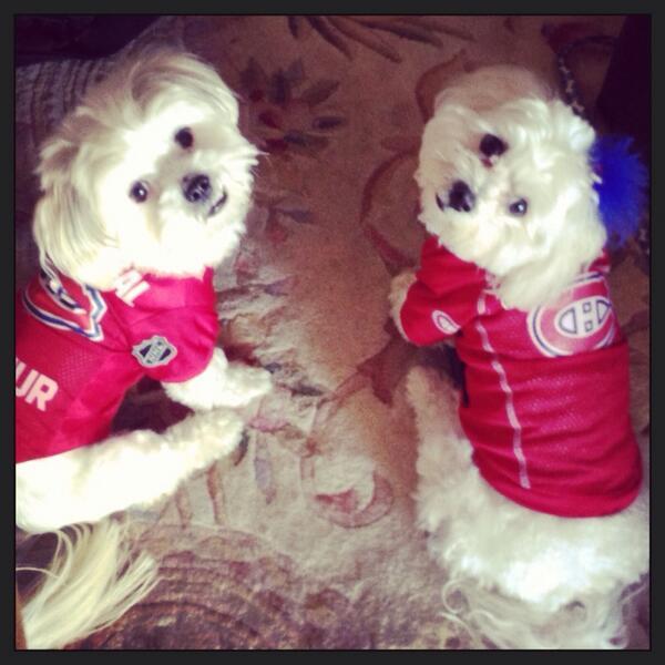 The boys are ready for tonight. #habsrituals #gohabsgo http://t.co/cerHetSjeN