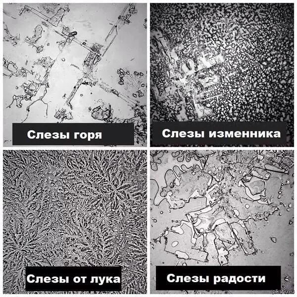 химический состав баранины таблица