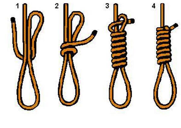 Bruins fans be like...
