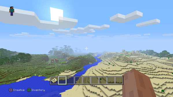 Mincraft ps4 view