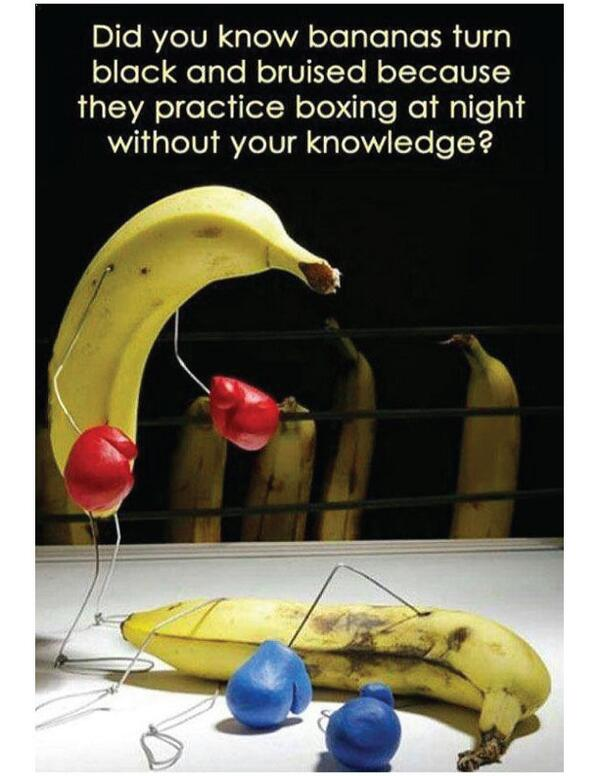 the first rule about banana fight club is that you dont talk about banana fight club....