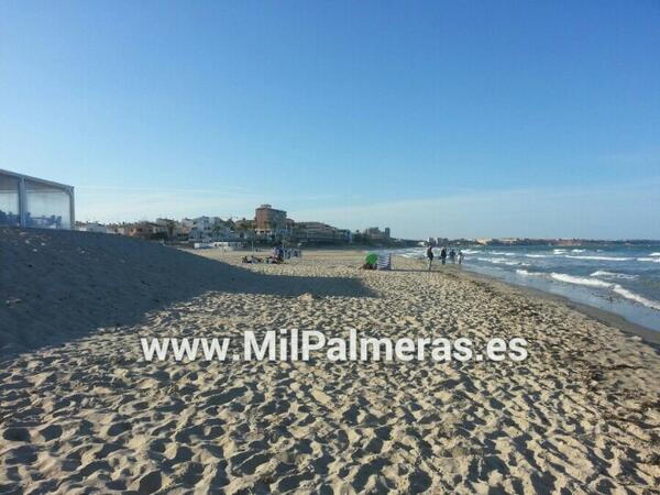 Playa Mil Palmeras