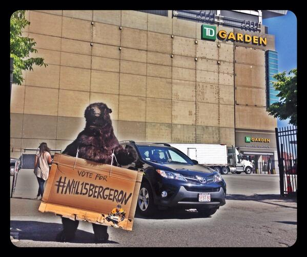 this made my day a little more Bear-able.  #Bruins #NHL15Bergeron http://t.co/q994l3yXwZ