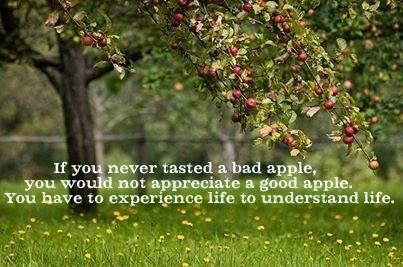 Twitter / JoyAndLife: You have to experience life ...