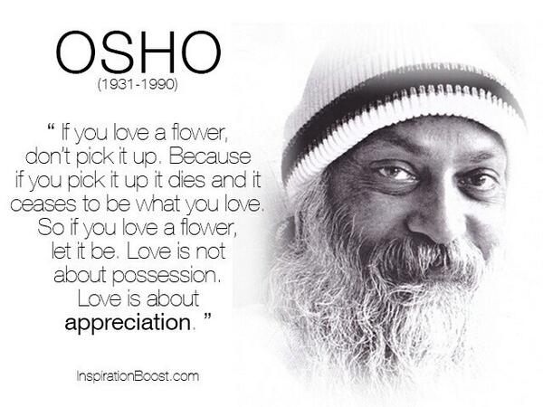 Chantelle Baxter On Twitter Overdosing On Osho Quotes Again If You Love A Flower Dont Pick It Up Http T Co Jhhfgqdy