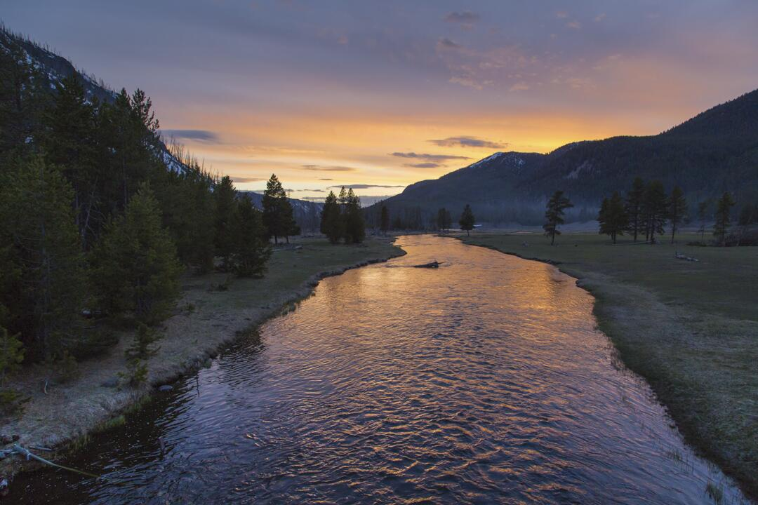 Yellowstone National Park's Twitter feed:  Spring sunset on the Madison River. pic.twitter.com/8nZSxJvBeZ