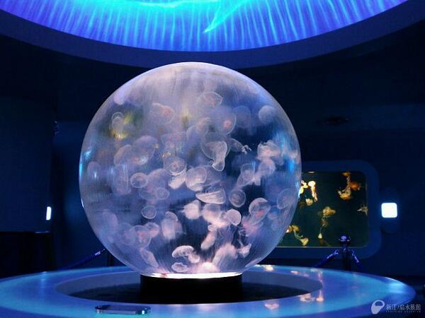 昨夏誕生した球型水槽「クラゲプラネット(海月の惑星)」。多くの工夫を詰め込んだ水槽です。【クラゲファンタジーホール】 http://t.co/3cR9ILqv1C 携帯 http://t.co/BI2HWMTesM http://t.co/VAdDxRoApa