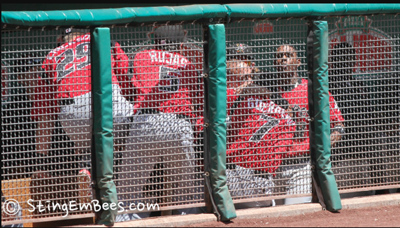 Foto cuando Miguel Olivo muerde en la oreja a Alex Guerrero en AAA hoy. http://t.co/fpieqP4iQP